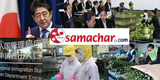 जापानमा विद्यार्थीलाई काम खोज्न खुकुलो नियम - व्यापार र पर्यटकमा आएरपनि भिषा फेर्न सकिने
