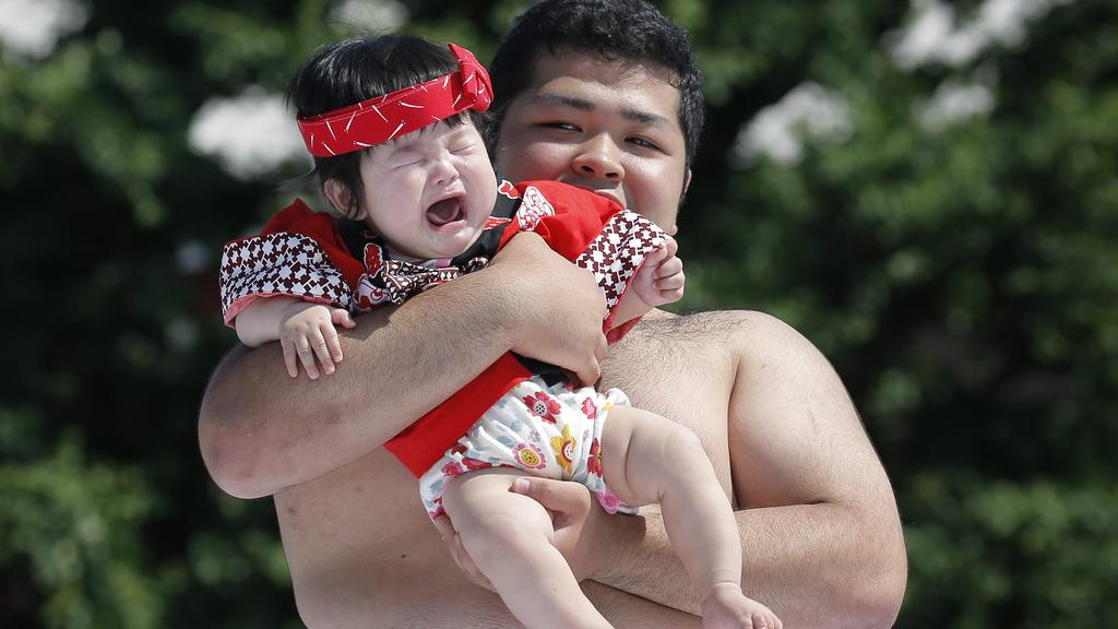 विचित्र जापान-यस्तो देखियो ६ देखी १८ महिनाका बालबालिकाको सुमो प्रतियोगिता