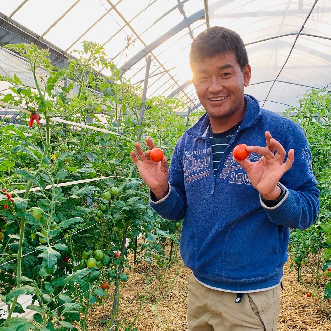 जापानका नेपाली किसान जो ओलम्पिकको टर्च बोक्दैछन