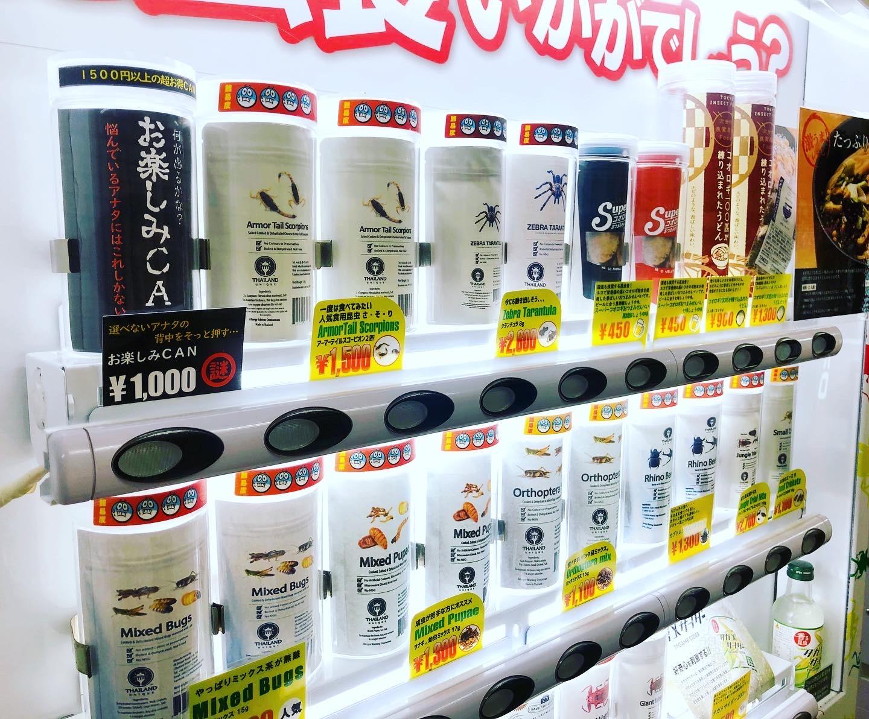 खाने हैन त ? जापानमा भेण्डिङ् मेशिनमा कीरा फट्याङ्ग्रा विक्रि सुरु