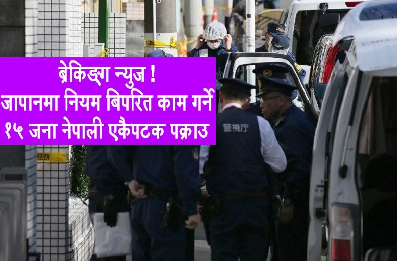 विशेष समाचार : जापानको हाचिओजीमा 'नियम बिपरित कामगर्ने' १५ जना नेपाली पक्राउ